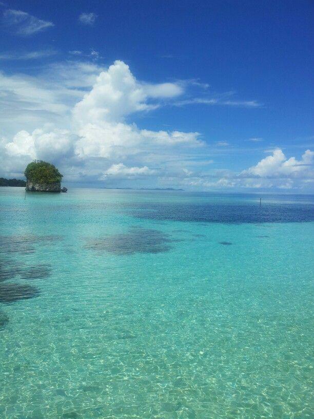 beach at raja ampat,Indonesia