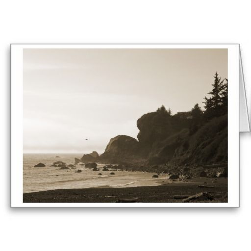 Redwood Coast photograph in sepia by v.y. hoffman. (Greeting Cards by #vyhphotography at #zazzle)
