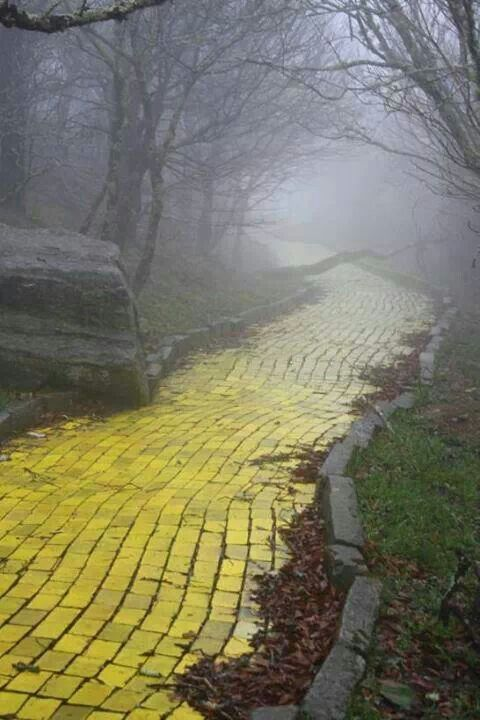 The Land of Oz is a defunct theme park located in the (ski) resort town of Beech Mountain, North Carolina, USA It was opened in 1970 and closed in 1980.  At the top of a mountain, a crumbling Yellow Brick Road winds around forests filled with creepy anthropomorphic trees...