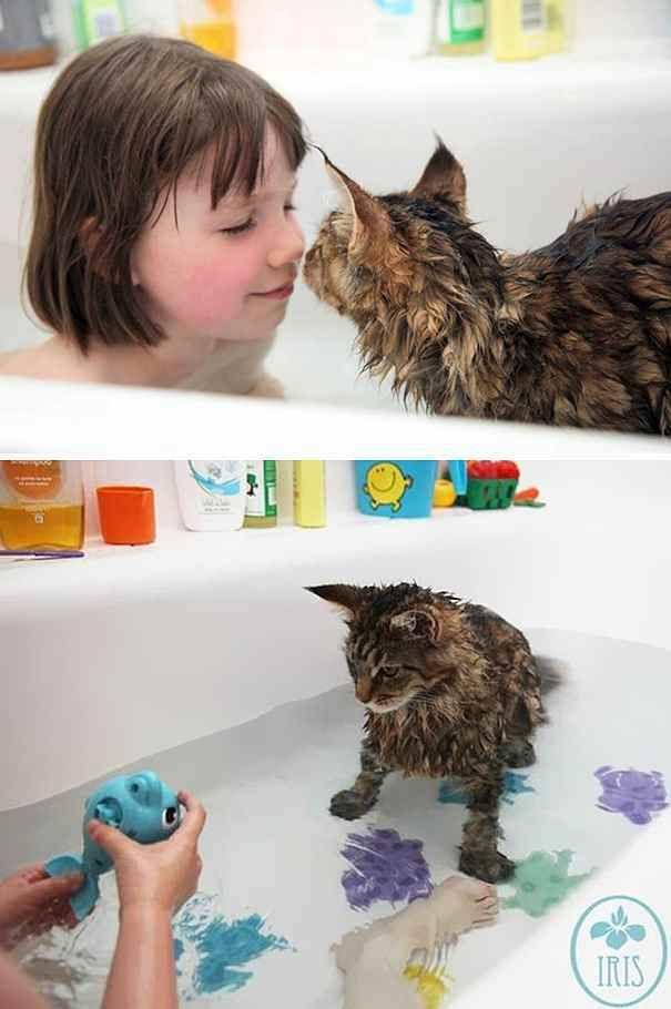 【いい湯だにゃん!】お風呂が大好きなネコが幸せそうな18選 - ばずヌコ