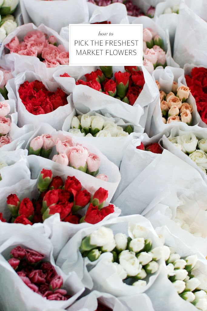 HOW TO: PICK THE FRESHEST MARKET FLOWERS