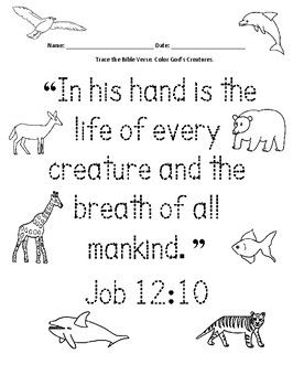 Pin on Bible - Printable Worksheets and Activities