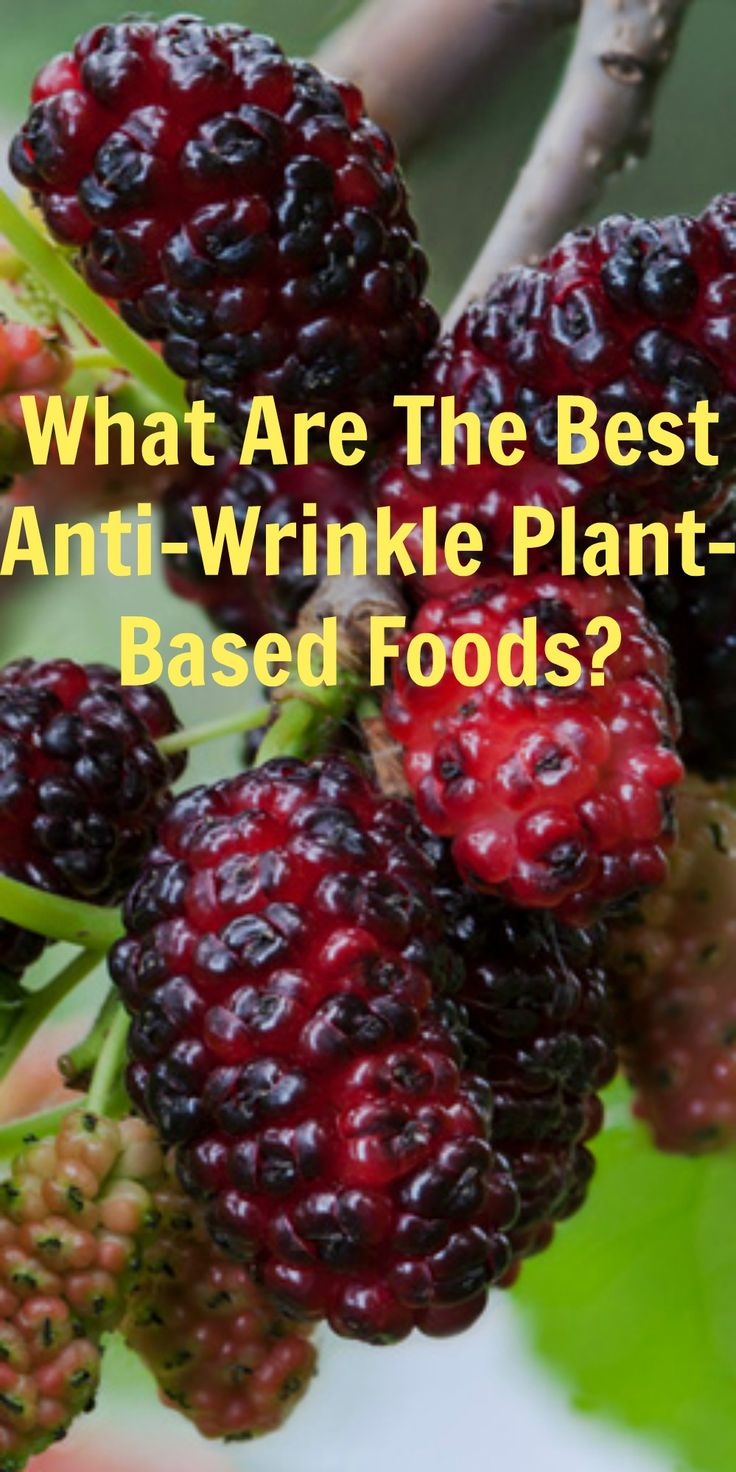 WHAT ARE THE BEST ANTI-WRINKLE PLANT-BASED FOODS?