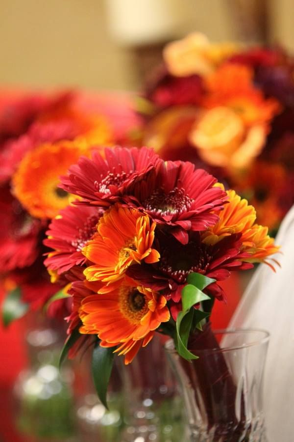 Fall Gerbera Daisy Bouquet Gorgeous red an...
