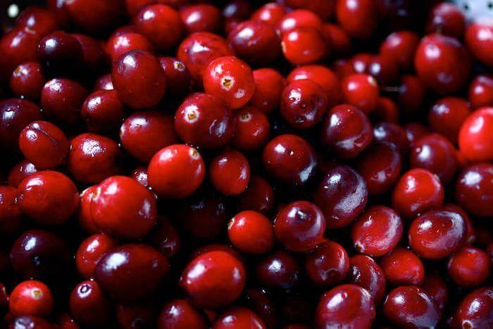 Arándano rojo – Propiedades, contraindicaciones, como tomar, capsulas, comprar