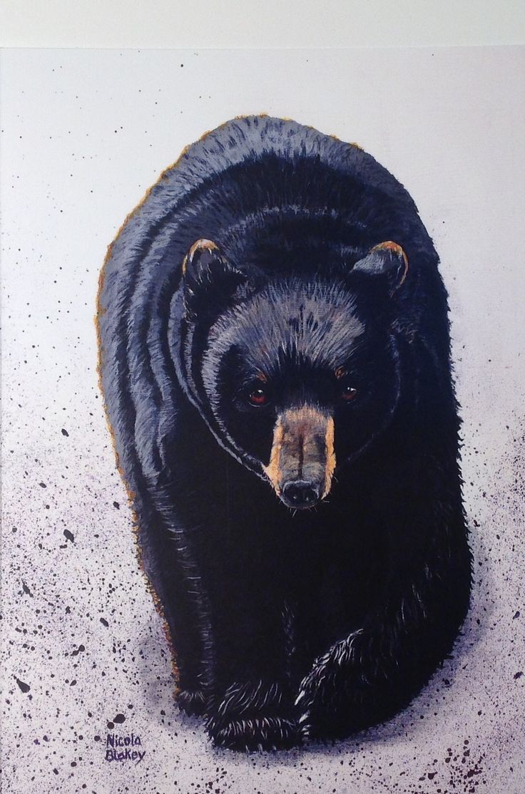 """""""Ursus Americans"""" painted in acrylic on canvas."""