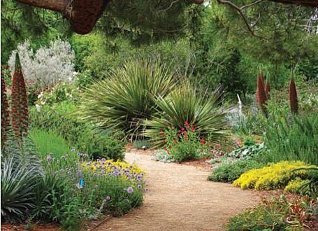 drought tolerant garden path