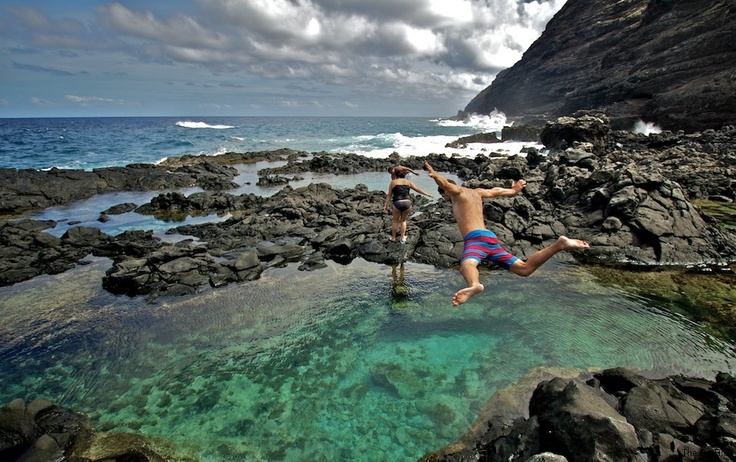 160 best tide pooling images on pinterest shells beleza for Hawaii tides for fishing