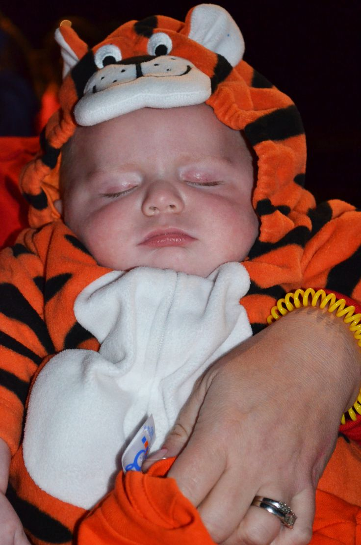 Tiger Costume During Halloween Weekends At Lake Rudolph Campground RV Resort