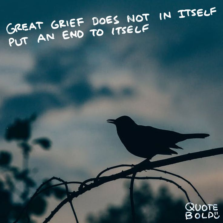 """Great grief does not of itself put an end to itself."" – #Lucius #Annaeus #Seneca  See more #condolences #sympathy #quotes at http://quotebold.com/condolences-quotes-sympathy/"