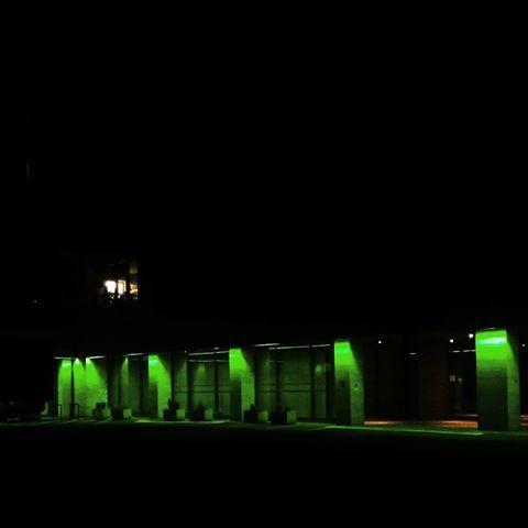 🐍 . . . .  #slytherin #twinpeaks #neon #neonlights #night #green #light #black
