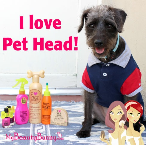 Review of cruelty free pet products from Pet Head (makers of Bed Head). #dogs #pets #crueltyfree