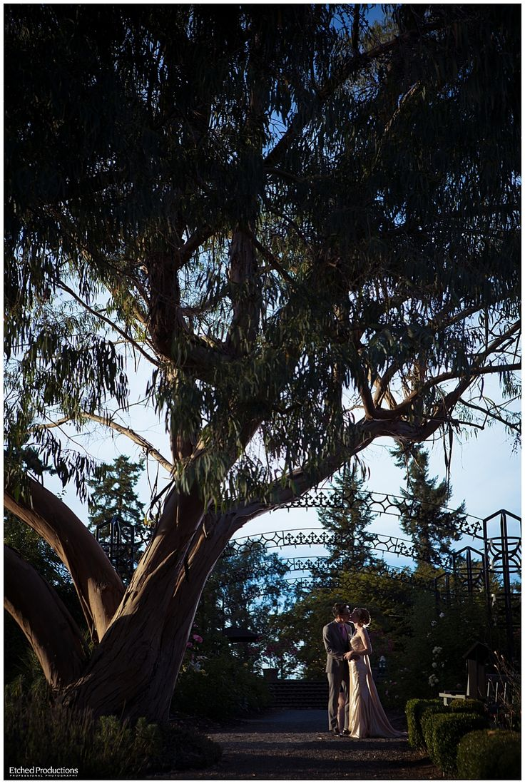 Horticulture Centre of the Pacific Wedding and Chinese Tea Ceremony - Allan + Rochelle (Victoria Wedding Photographer)