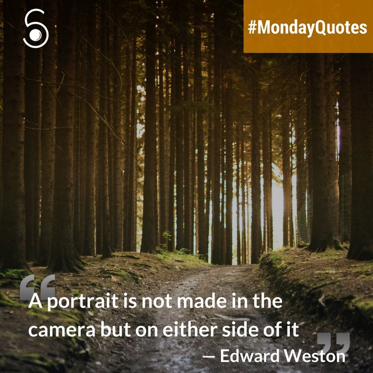❝A portrait is not made in the camera but on either side of it❞ -Edward Weston