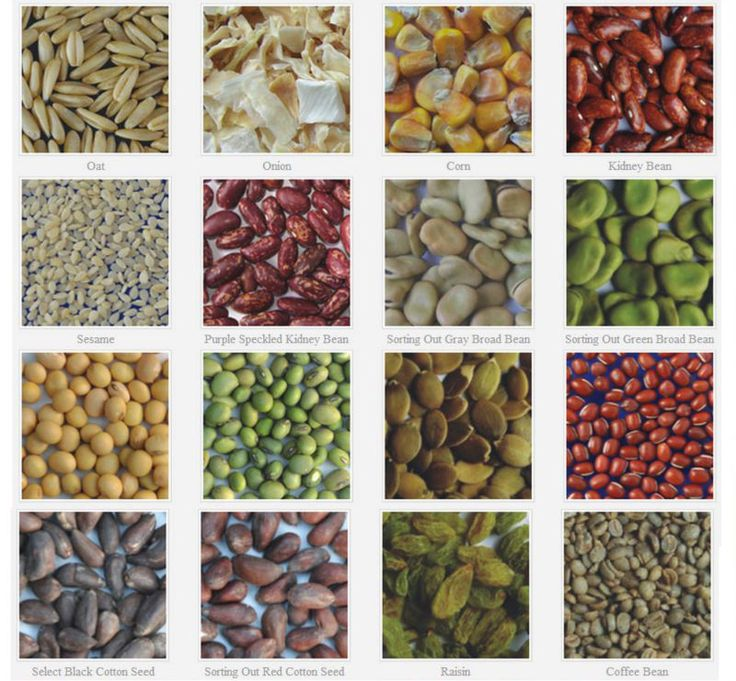 Different type of #Seeds. nextech provide #Cleaning , #Grading & #Sorting #Solutions .