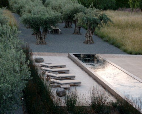 In this lush and relaxing setting, landscape architect Andrea Cochran placed the pool terrace between a charming olive grove and a lush, grassy Sonoma Valley meadow. Beautiful and serene, the raised lap pool reflects the white clouds of the sky.  - ELLE DECOR