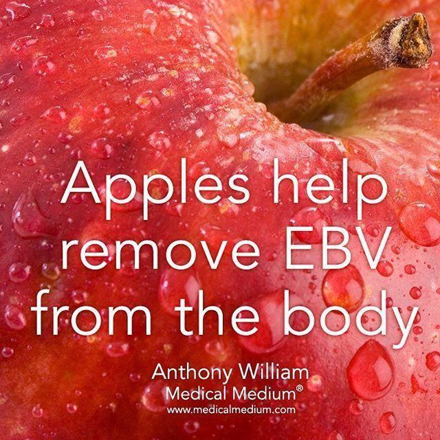 50184055d27c9d0cf32803a93cf3b47c - How To Get Rid Of Chronic Epstein Barr Virus