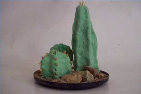 How to Make a Fake Cactus thumbnail: Beards Dragon, Cacti Fake, Cactus Plants, Easy Care, Texture Doughthat, Fake Cactus, Dragon Tanks, Care Greenery, Cacti Special