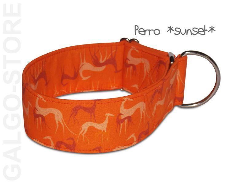 Hundehalsband *Perro sunset*, orange, Zugstopphalsband, Martingale, Klickverschluß, Windhund Halsband, Galgo, Greyhound, Whippet Halsband von GalgoStore auf Etsy