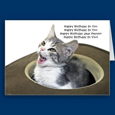 Singing Kitten Greeting Greeting Cards
