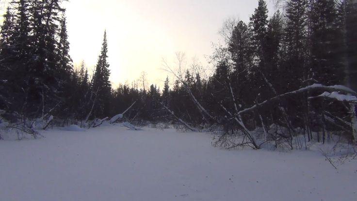 Одиночный поход тайгу в мороз  - 55 обморожение ног охота рыбалка сибирь...