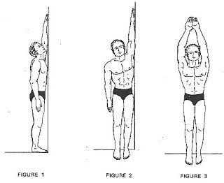 ¿Quieres Crecer de Estatura Naturalmente? Sigue Estos 10 Pasos y Añade Unos Cuantos Centimetros Mas a Tu Altura: