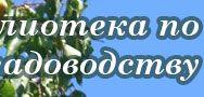 Малина (Казаков И.В., Кичина В.В. )