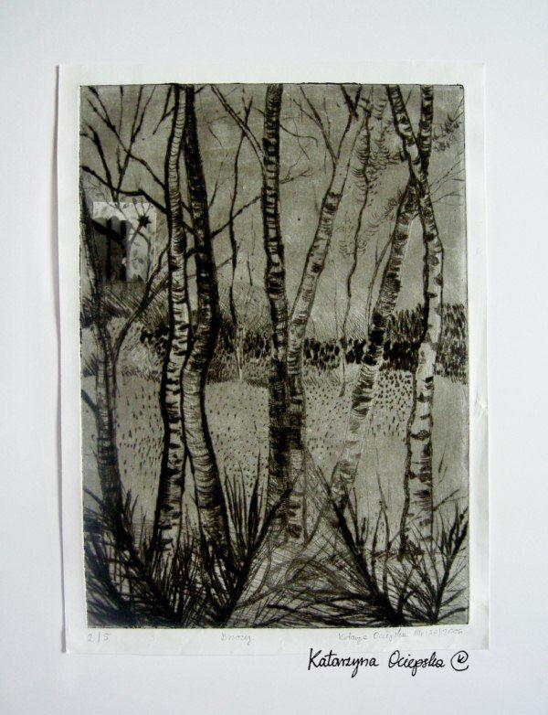 Brzozy, (The Birch), drypoint and collages 2006 #suchaigla #drypoint #print #printing #druk #drukowanie #uljado