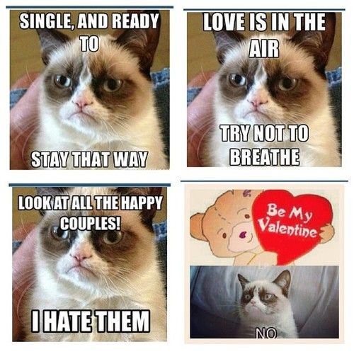 25+ Parasta Ideaa Pinterestissä Grumpy Cat Valentines Grumpy Cat   Single Valentine  Meme