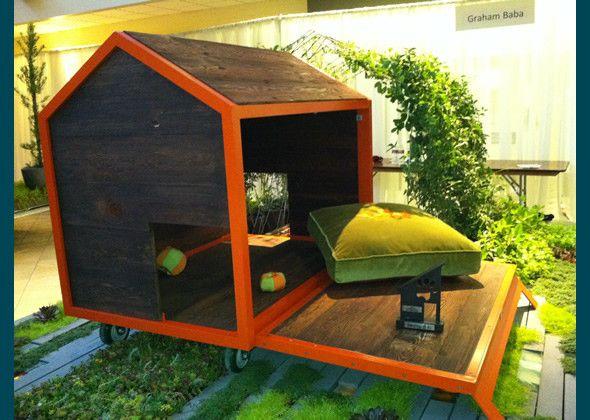 Team Graham Baba sustainable dog house