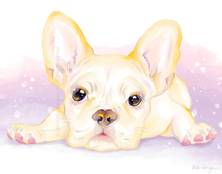 Excited to share the latest addition to my #etsy shop: A Sweet French Bulldog Puppy, Art Print Of Original Painting, 11x14, 8x10. How adorable is this chubby Frenchie puppy?😍 #FrenchBulldogPrint #FrenchBulldogGift #NurseryDecor #PetPortrait #BulldogArt-#WallArt #FrenchBulldogPainting #gicleeprint #beige #rainbow #dogdrawing https://etsy.me/2GJyuV3