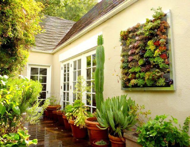 52 best Vertical Garden Ideas images on Pinterest | Vertical gardens ...