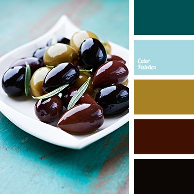 aqua, black, Blue Color Palettes, brown, color matching, color palette, color solution for renovation, hot blue, mustard, olive, olive color.