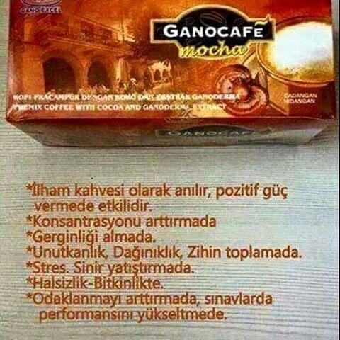 GanoExcell  moocaa