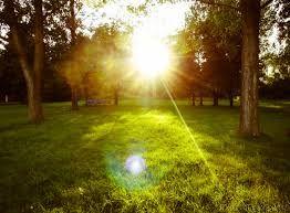Imagini pentru natura vara