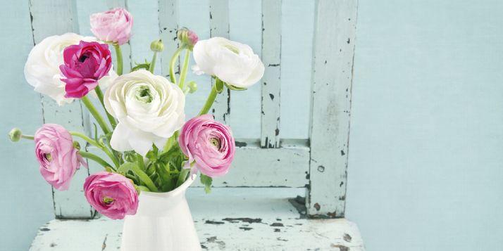 Om zo lang mogelijk van je bos bloemen te genieten, is het belangrijk om een schone vaas te gebruiken. Maar een vaas schoonmaken, hoe doe je dat?