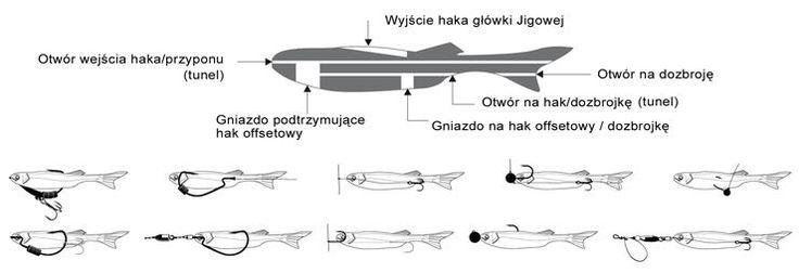 Znalezione obrazy dla zapytania zbrojenie jaskółek