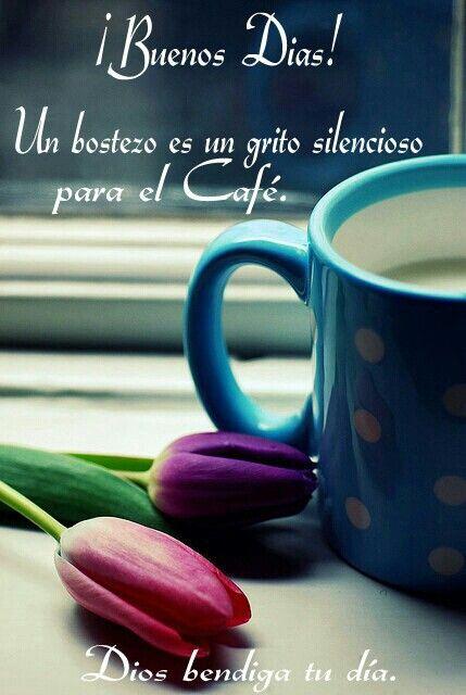 ¡Buenos Días! Un bostezo es un grito silencioso para el Café.  Dios te bendiga tu día.