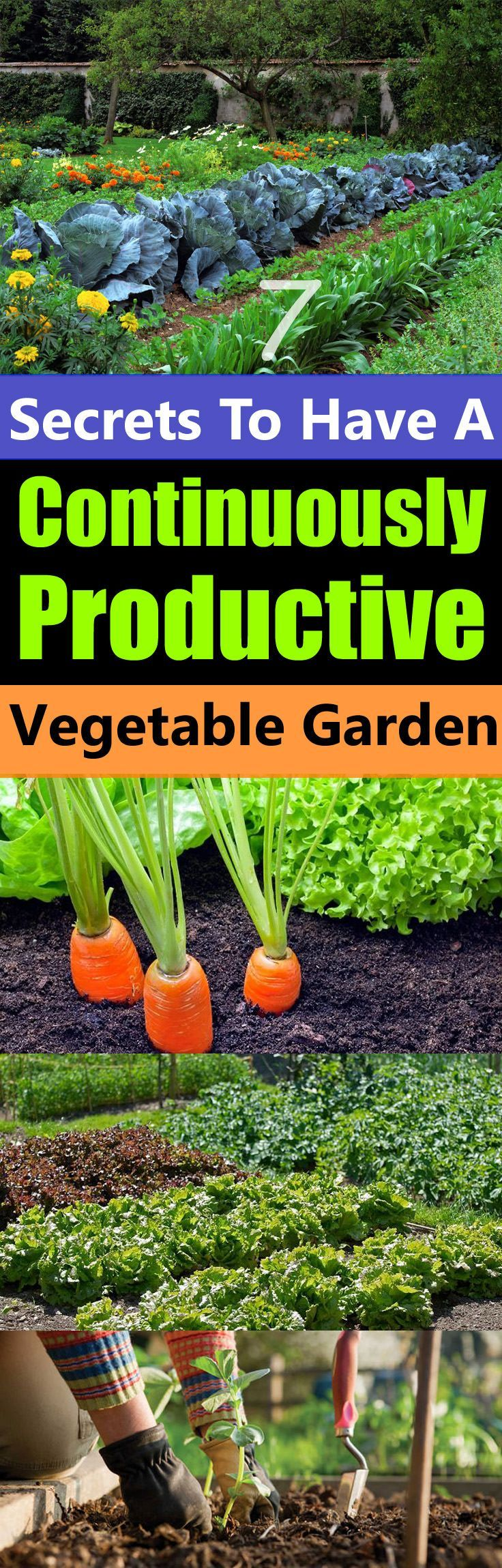 Garden Design Vegetables And Flowers best 25+ vegetable gardening ideas on pinterest | gardening