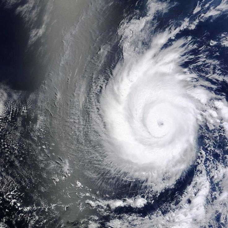 Dans le Pacifique, à 1000 kilomètres au sud de la péninsule de basse Californie, Emilia a pris rapidement de l'ampleur : le 9 juillet, c'est encore un ouragan classé en catégorie 2 avec des vitesses de vent maximales de 175 km/h. 12 heures plus tard, le National Hurricane Center de Miami le classait désormais en catégorie 4 sur l'échelle de Saffir-Simpson avec des rafales à 220 km/h. La pression au centre de la dépression est de 950 millibars. Emilia suit Daniel qui s'est affaiblit...