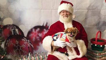 FREE Holiday Photo with Santa at PetSmart on http://www.canadafreebies.ca/