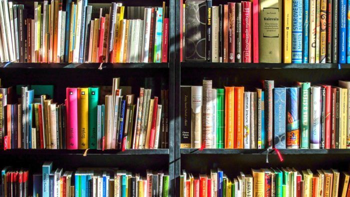 Bookcase Zoom Background Download Free Virtual Backgrounds Books Finance Books Travel Book