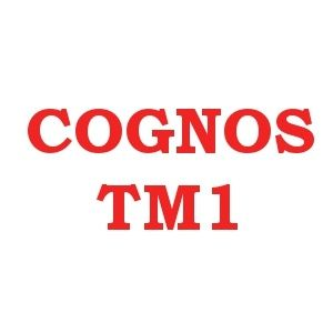 ONLINEITGURU  Gives  Online  Corporate  Cognos TM1 Trainings  with  12+Expert, 100%Live  Projects ,Free DEMO 's  USA,UK,Canada, Australia, India, Singapore   all  the  world.