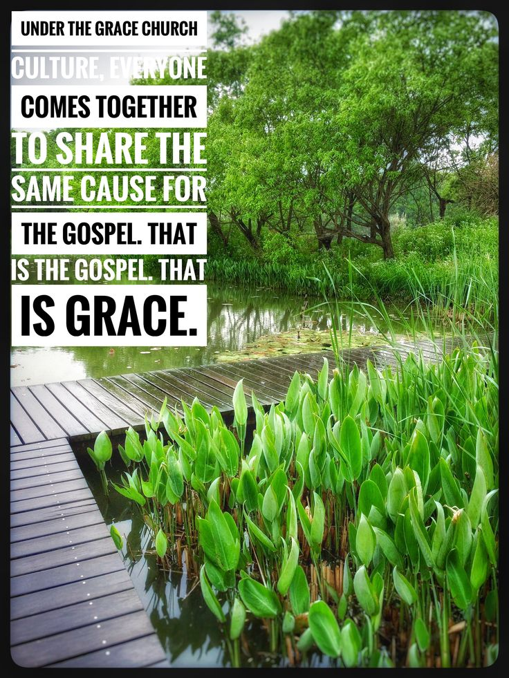 Grace church culture - everyone shares the same cause for the Gospel