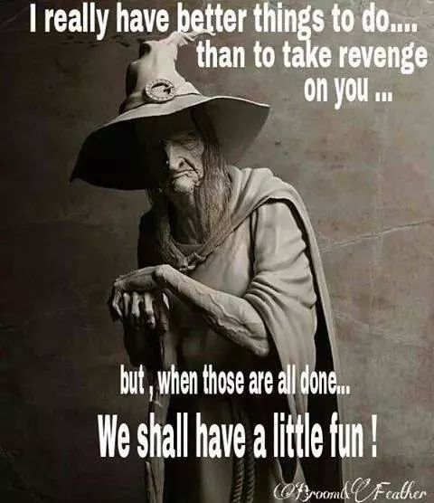 Best 366 Wicca Humor Images On Pinterest
