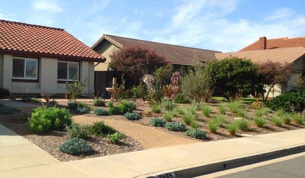 Sustainable Front Yard, Carlsbad | Allee Landscape Design