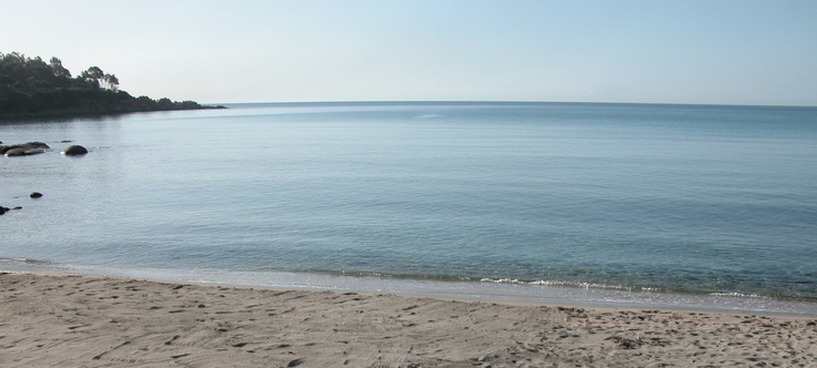 spiaggia di girasole