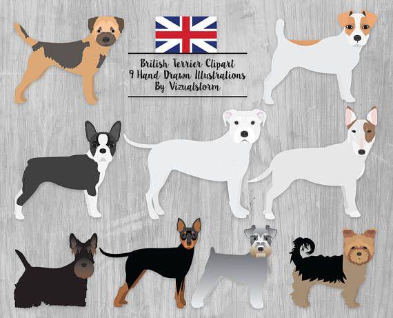 British Terrier Dog Breeds Clipart Bull Terrier Yorky Border Jack