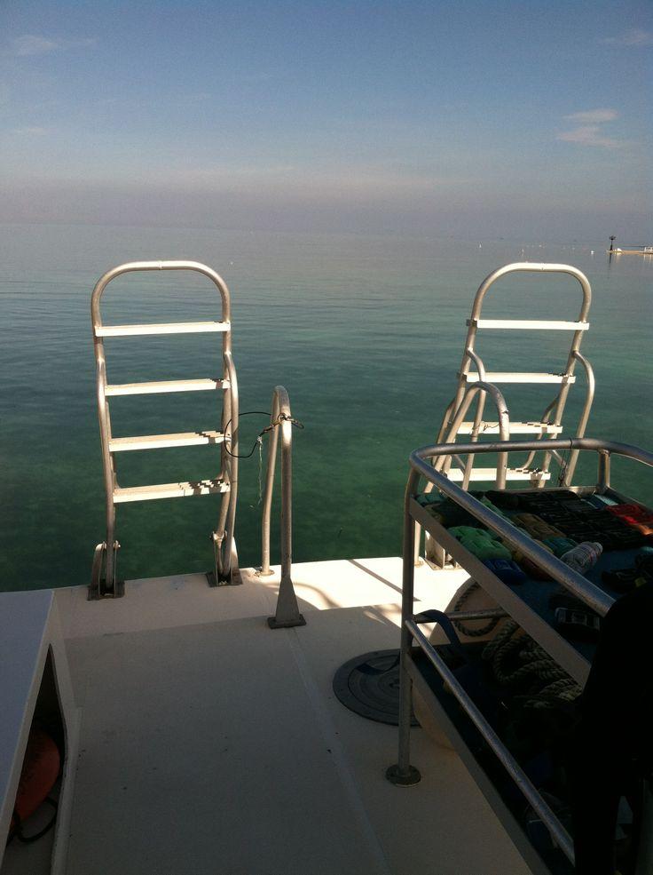 100 Best Pontoon Boat Ladders Images On Pinterest