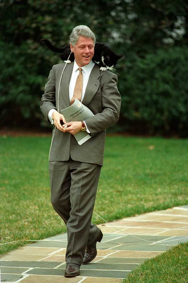 President Bill Clinton with his cat Socks at the South Lawn at the White House 1995 | Rare and beautiful celebrity photos